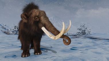 mamut shutterstock_778881391