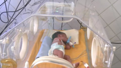 bebe incubator