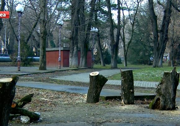 taieri pomi balcescu parc