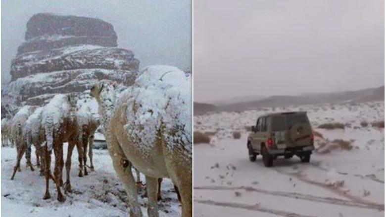 ninsoare desert arabia saudita