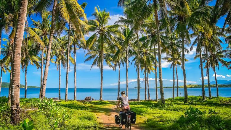 jungla indonezia