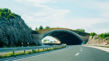 ecoduct autostrada