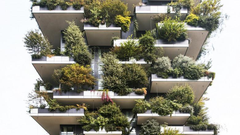 padure verticala bosco verticale milano foto stefano boeria