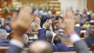vot plen parlament