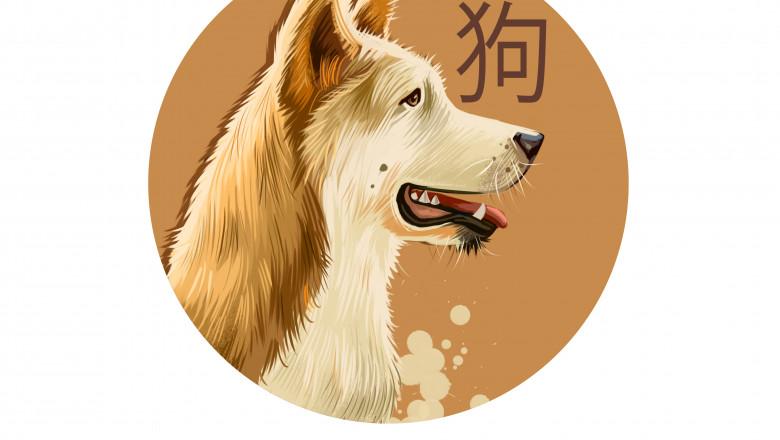 anul cainelui zodiac chinezesc