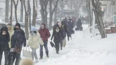 iarna zapada 180227_VISCOL_BUCURESTI_04_INQUAM_Photos_Octav_Ganea