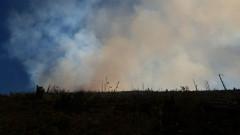 incendii munte Maramures (6)