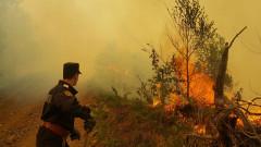 incendii munte Maramures (2)