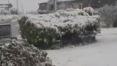 ninsoare franta