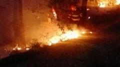 incendiu litiera de padure (10)