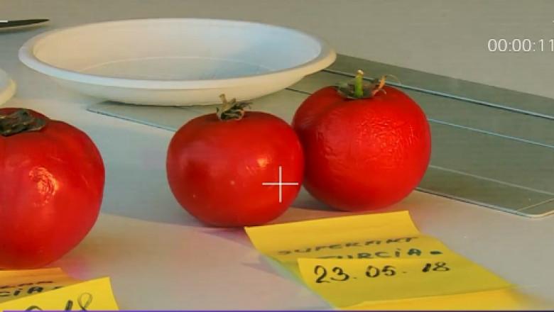 experiment digi24 rosii