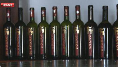 salon vinuri