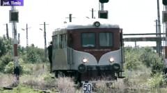 tren timis