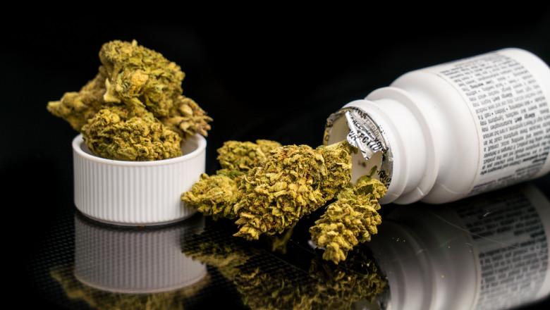 canabis medicinal shutterstock_1127810768