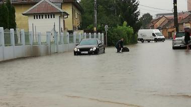 inundatie pasteur