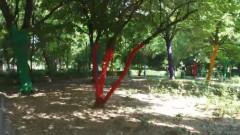 copaci vopsiti