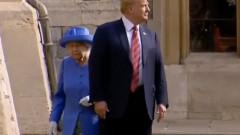 trump regina