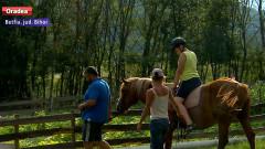terapie cai