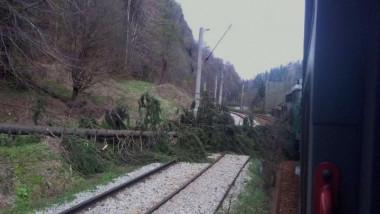 pomi cale ferata
