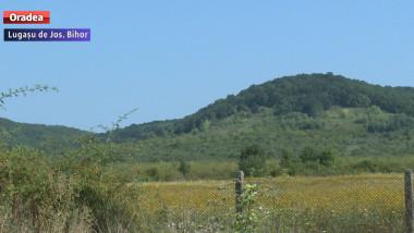 terenuri investitori Bihor