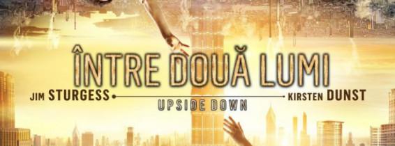 upside-down-493843l1-776x1024