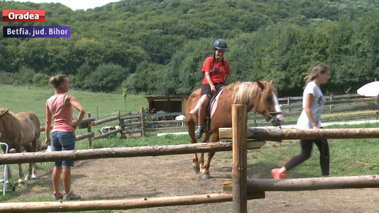 caii din Vale