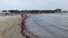 poluare pacura mangalia_apele romane (5)