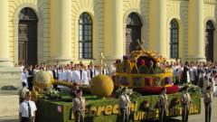 carnavalul florilor Debretin 2018 (2)