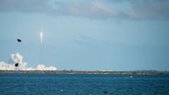 racheta space x zbor pe luna elon musk
