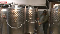 producator de vin Diosig