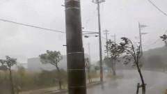 taifun trami