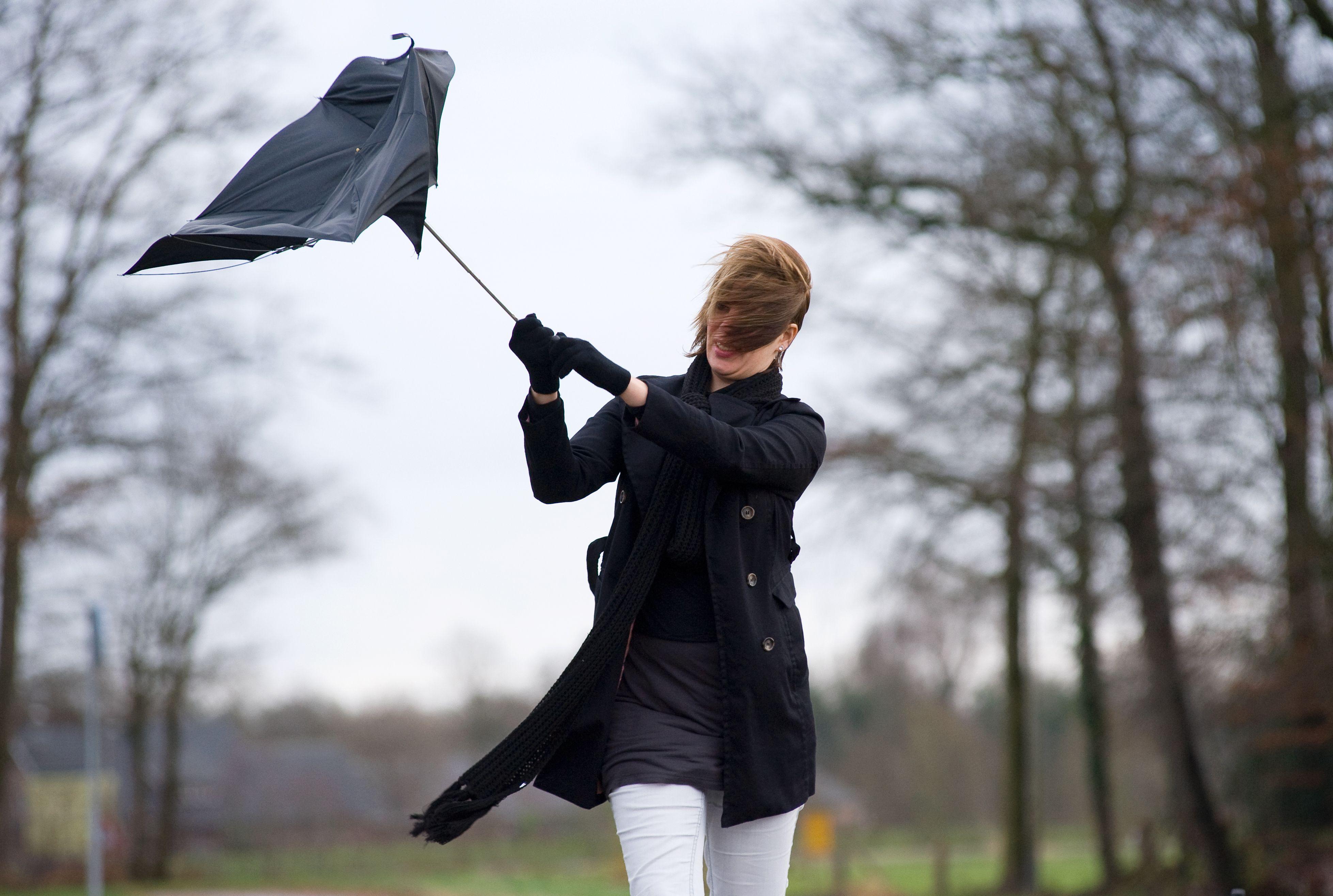 Meteorologii ANM au emis cod galben de vant puternic. Zonele afectate