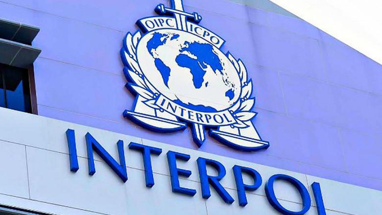 interpol 3