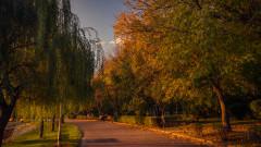 toamna vreme meteo parc frunze copaci