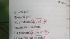 manualul de limba romana