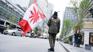 tanar skateboard steag canabis marijuana canada_shutterstock_1087424537