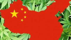 china marijuana