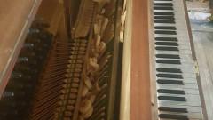 pianina-oradea-parcul-lalelelor