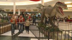 dinozauri la mall5