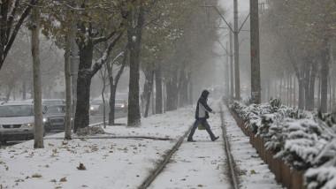 cod galben vremea meteo iarna ninsoare_inquam photos octav ganea (1)
