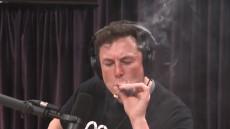 elon musk marijuana 1