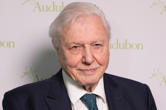 David Attenborough_shutterstock_1039038541