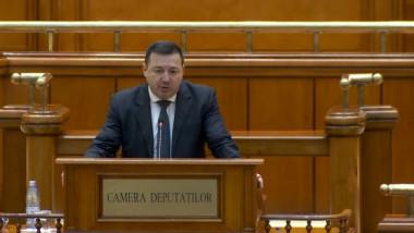 catalin-radulescu-parlament