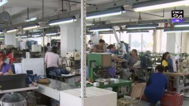 angajati fabrica