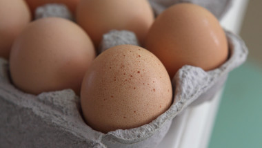 Egg Prices Rise 40 Percent After Major Salmonella Outbreak
