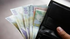 bani lei portofel_shutterstock_662110411