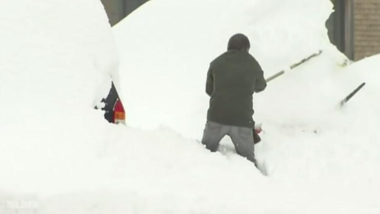 ninsoare austria