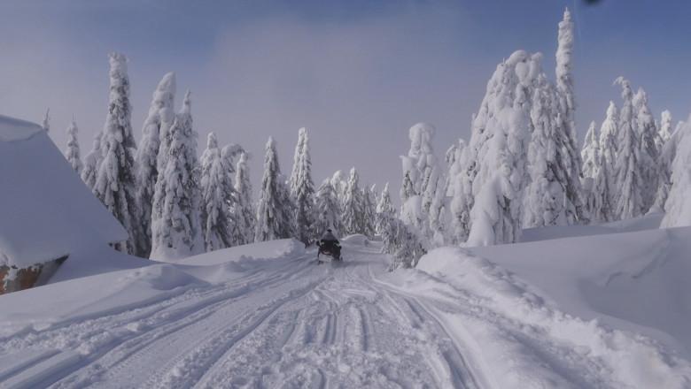 Cod galben de ninsoare și viscol la munte