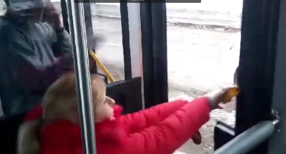 VIDEO. Calatori captivi in noile autobuze ale STB