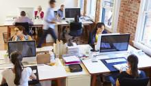 angajati birou calculatoare shutterstock_284519087